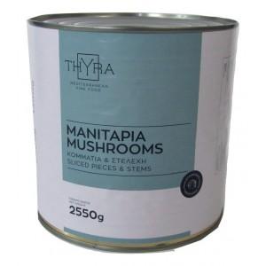 """Κονσέρβα Μανιτάρι """"Thyra"""" (2,550 Kg τεμάχιο-1,380 Kg καθαρό βάρος/6 τεμάχια στο κιβώτιο)"""
