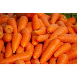 Καρότα Baby Mini Κατεψυγμένα Βελγίου 10 Kg