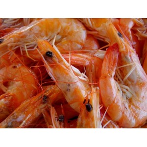 Γαρίδες Αμβρακικού (1 Kg-50 γαρίδες ανα Κιλό/8 τεμάχια στο κιβώτιο)